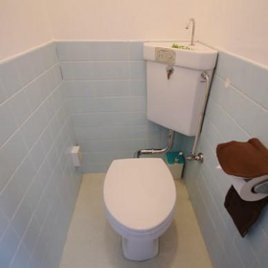 asi_toilet (1)